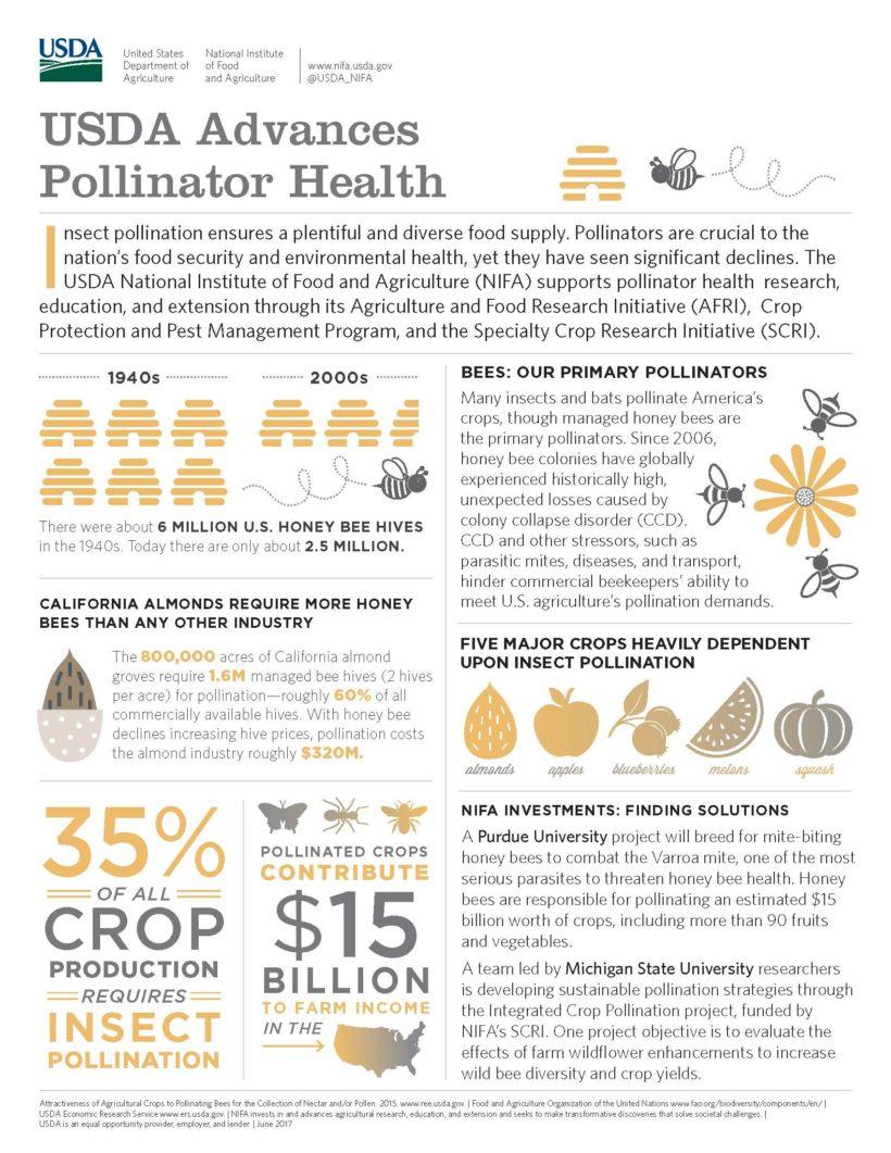 USDA advances pollinator health infographic