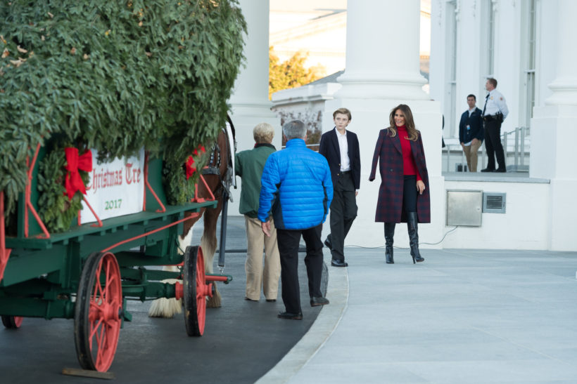 First Lady Melania Trump and her son, Barron, welcome the official White House Christmas Tree to the North Portico entrance of the White House, Monday, November 20, 2017 in Washington, D.C. The tree, presented by the Chapman family of Silent Night Evergreens in Endeavor, Wisconsin, will be stand in Blue Room of the White House for the Christmas season.