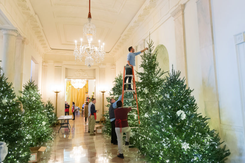 White House decoration volunteers prepare Christmas tree decorations on State Floor at the White House, November 24, 2017, in Washington, D.C.