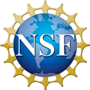 Director of the National Science Foundation